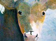 Cattle Framed Prints Painting Framed Prints - Spotted Cow Framed Print by Sherry Matlack
