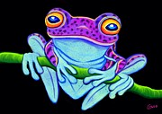 Nick Gustafson - Spotted Purple Frog