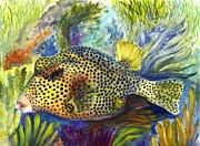 Tropical Fish Drawings Posters - Spotted Trunkfish Poster by Carol Wisniewski