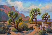 Diane McClary - Spring at Joshua