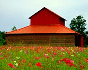 Red Barns Metal Prints - Spring Barn Metal Print by Karen Wiles