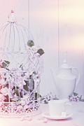 Birdcage Photos - Spring Birdcage by Christopher and Amanda Elwell
