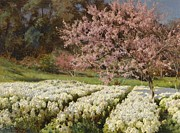 Movie Poster Prints Prints - Spring Blossom 1905 by Rachkovsky Print by Movie Poster Prints