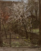 Chalk Pastels Framed Prints - Spring Blossoms Framed Print by Henry Muhrmann