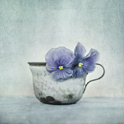 Monochromatic Metal Prints - Spring Blues With A Hint Of Yellow Metal Print by Priska Wettstein