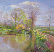 Reflection On Calm Pond Prints - Spring Bridge Print by Timothy  Easton