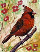 Eve Wheeler Framed Prints - Spring Cardinal Framed Print by Eve  Wheeler
