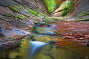 Mountain Fork Creek Prints - Spring Cascades Print by Peter Coskun