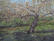 Gregory Arnett Paintings - Spring Cherry Blossoms by Gregory Arnett