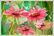 Wild-flower Drawings Posters - Spring Daisies in the Pink Poster by Mindy Newman