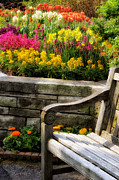 Flower Bed Prints - Spring Flower Bed and Bench Print by Julie Palencia