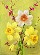 Spring Flowers Print by Randy Burns