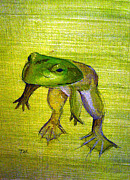 Lilypad Mixed Media - Spring Frog by Tina McCurdy