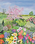Pink Blossom Trees Posters - Spring from the Four Seasons  Poster by Hilary Jones