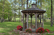 Gazebo Greeting Card Framed Prints - Spring Gazebo Framed Print by Debbie Portwood