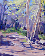 Tree. Sycamore Paintings - Spring Glow by Sarah Sheffield