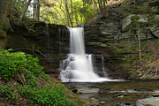 Reynolds Prints - Spring Green Emerges At Sheldon Reynolds Waterfall Print by Gene Walls