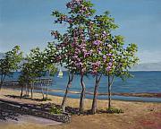 Spring In Kings Beach Lake Tahoe Print by Darice Machel McGuire