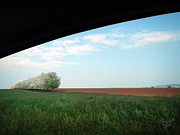 Moravia Photo Framed Prints - spring in Moravia Framed Print by Renata Vogl
