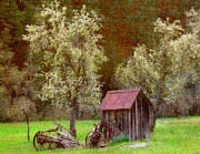 Old Barns Mixed Media Framed Prints - Spring in Old Ranch Framed Print by Irina Hays
