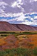 Owens River Metal Prints - Spring in Pleasant Valley Metal Print by Tina Slee