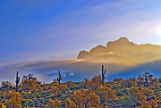 The Superstitions Prints - Spring in the air Print by Brian Lambert