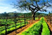 Wine Illustrations Digital Art Prints - Spring in the Vineyard Print by Elaine Plesser