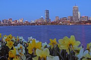 Skyscraper Photographs Photos - Spring into Boston by Juergen Roth