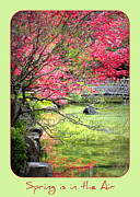 Garden Bridge Posters - Spring is in the Air Poster by Carol Groenen