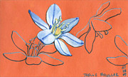 Stamen Mixed Media Originals - Spring by Joelle Bhullar
