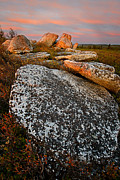 Bear Rocks Posters - Spring Light - Dolly Sods Poster by Bernard Chen