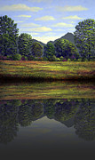 Frank Wilson Prints - Spring Meadow At Sutter Buttes Reflection Print by Frank Wilson