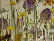 Primroses Paintings - Spring Meadow No 1. by Kaye Miller-Dewing
