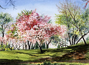 Tree Blossoms Paintings - Spring Morning by Barbara Jewell