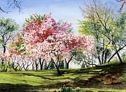 Spring Morning Print by Barbara Jewell