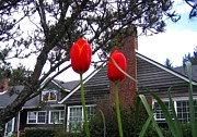 Chimneys Prints - Spring On The Oregon Coast Print by Will Borden