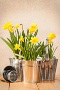 Shed Photo Prints - Spring Planting Print by Christopher and Amanda Elwell