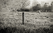 Haybale Photo Prints - Spring Post and Bale in Black n White Print by Tracy Salava