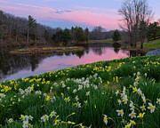 Scenic Connecticut Photos - Spring Serenity by Bill  Wakeley