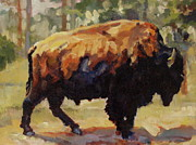 Bison Prints - Spring Shed Print by Patricia A Griffin
