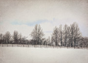 Winter Landscape Photos - Spring Snow by Pamela Baker