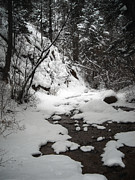 Light And Shadow Art - Spring Snow by The Forests Edge Photography - Diane Sandoval