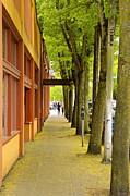 Landscape - Spring Street Scene by Sean Griffin