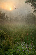 Foggy Morning Posters - Spring Sunrise In The Valley Poster by Dale Kincaid