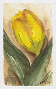 Olive Originals - Spring Tulip by Pat Katz