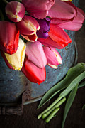 Blossoms Metal Prints - Spring Tulips Metal Print by Edward Fielding