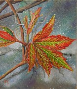 Vine Paintings - Spring Virginia Creeper by Nicole Angell