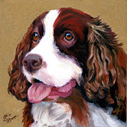 White Dog Framed Prints - Springer Spaniel Dog Framed Print by Alice Leggett