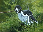 Fetching Water Prints - Springer Spaniel Fetching Print by Karen  Bockus