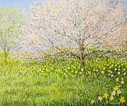 Pink Flower Branch Paintings - Springtime Impression by Kiril Stanchev